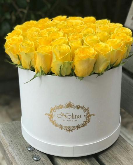 Beyaz Kutuda Sarı Aşk